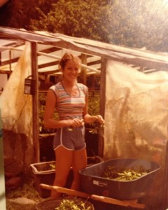 Suzanne Mulvehill working preparing Ficus cuttings in her father's mist house in 1977-1978.